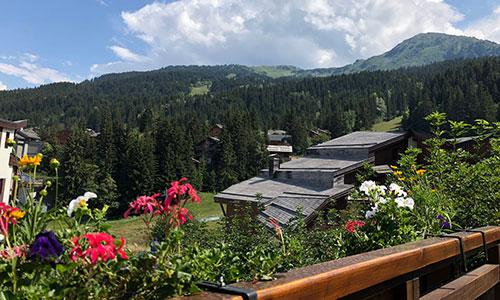 Terrace Summer